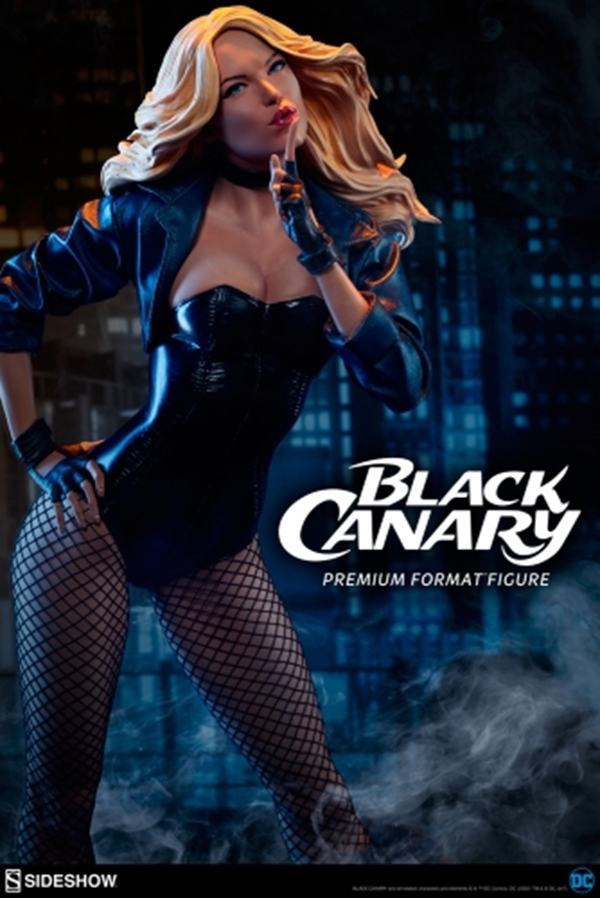 Black Canary Premium Format Stanley